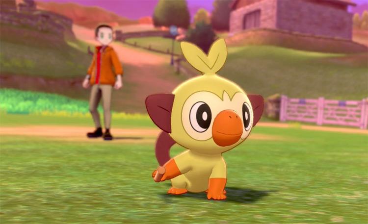 Shiny Grookey in Pokémon Sword