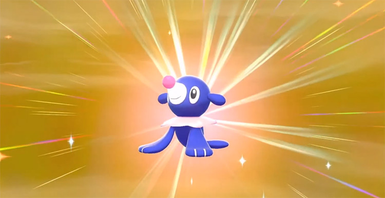 Shiny Popplio in Pokémon SW/SH