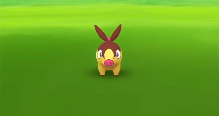 Shiny Tepig in Pokémon GO