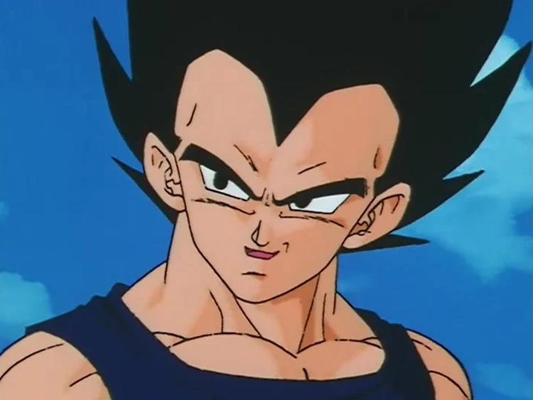 Vegeta in Dragon Ball anime