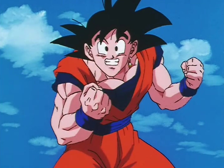 Goku from Dragon Ball Z anime