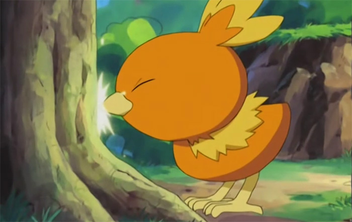 Torchic from the anime