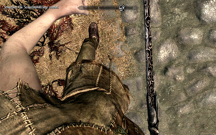 Joy of Perspective Skyrim mod