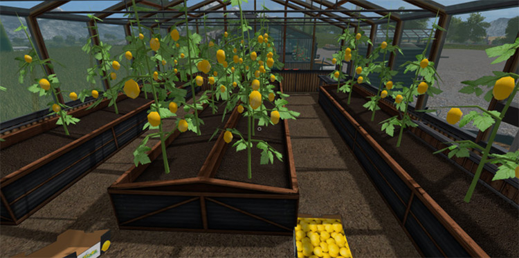 Giants GreenHouses Placeable Farming Simulator 17 mod
