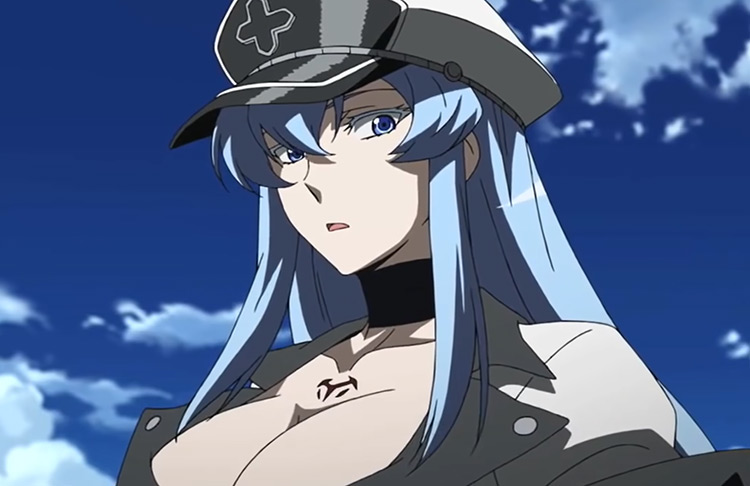 Anime girl in military outfit - Esdeath