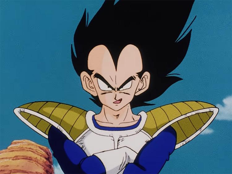Vegeta crossed arms - Dragon Ball Z anime