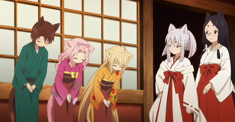 Cute fox girls in Konohana Kitan Anime