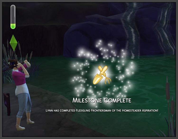 Homesteader Aspiration Sims 4 CC screenshot