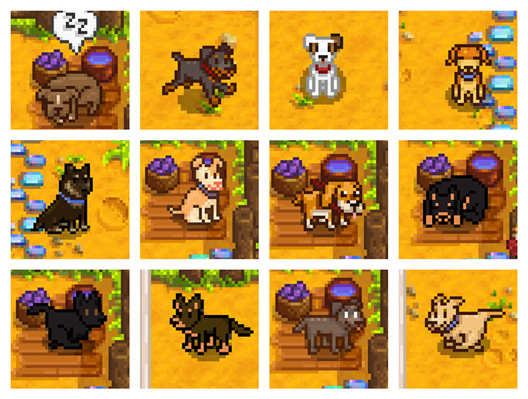 Froststar11's Canine Collection Mod for Stardew Valley