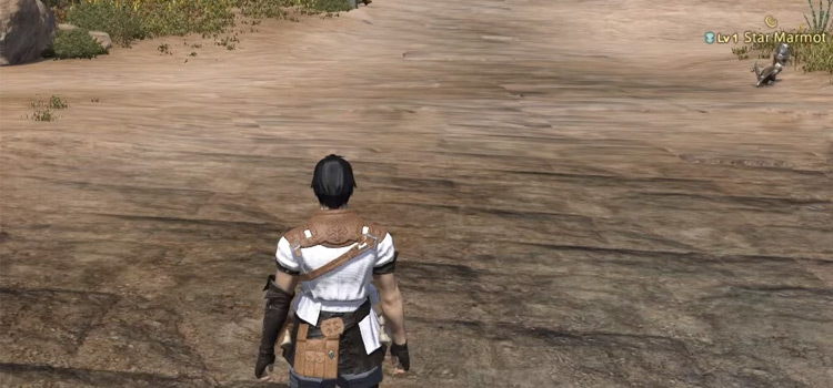 Character standing in field in FFXIV
