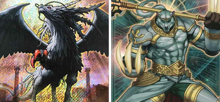 Yu-Gi-Oh: The Best Lightsworn Cards For Your Deck