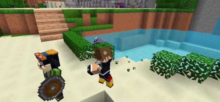 Sora and Goofy on Destiny Islands (KH1 Roleplay) / Minecraft Screenshot