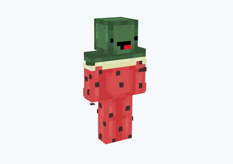 Watermelon Character with Derp Face / Minecraft Skin