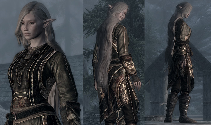 DreamBurrows Regal Assassin Skyrim mod