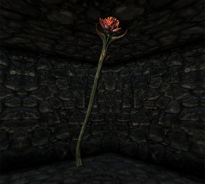 Sanguine Rose in Skyrim