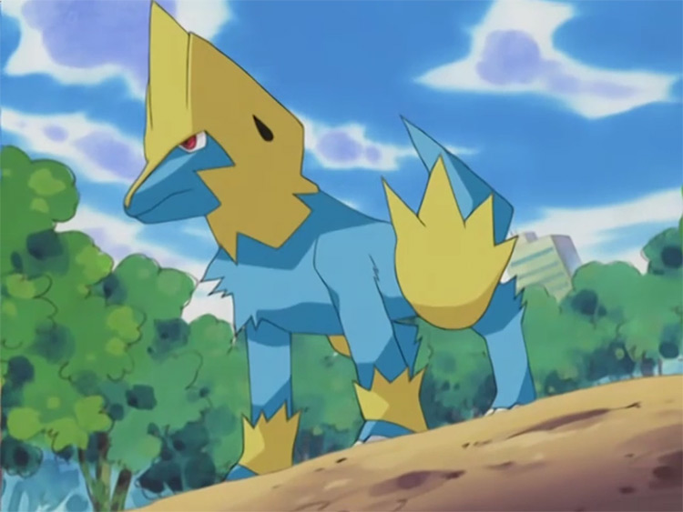 Manectric Pokemon