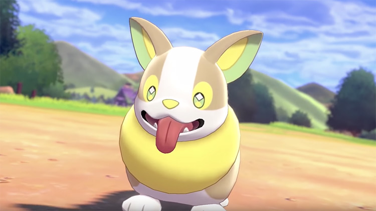 Yamper Pokemon anime