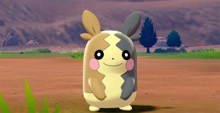 Morpeko in the anime