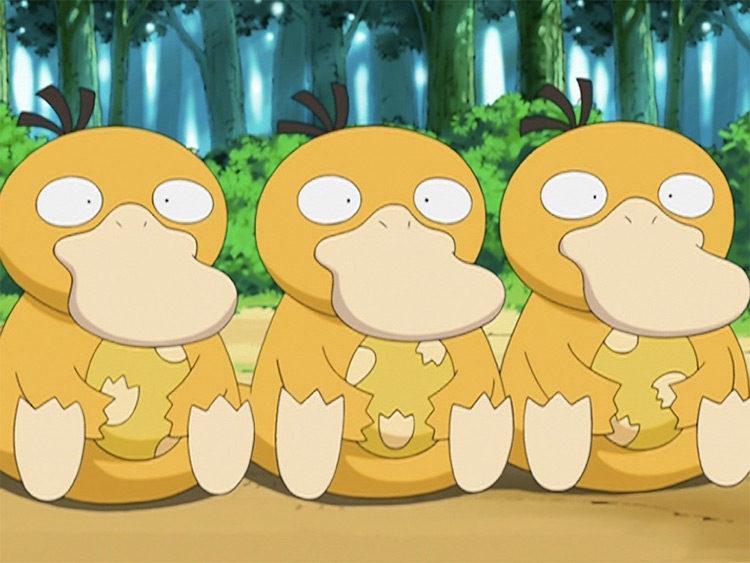 Psyduck in the anime