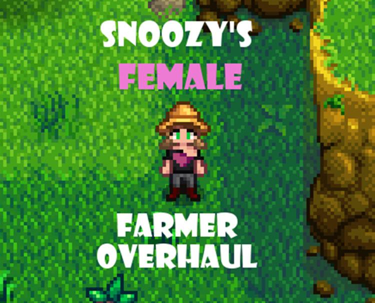 Female Farmer Clothing Overhaul Stardew Valley mod