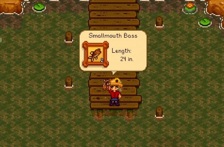 Auto Fishing mod for Stardew Valley