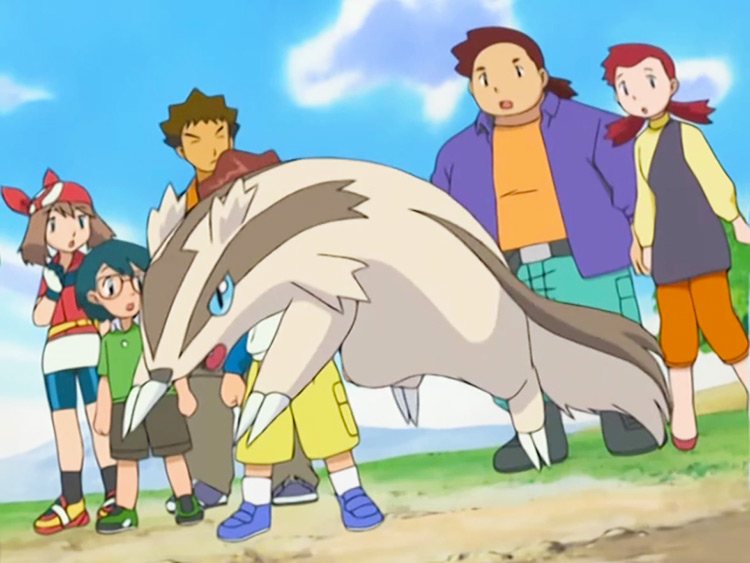 Linoone (HG/SS Only) in Pokemon anime