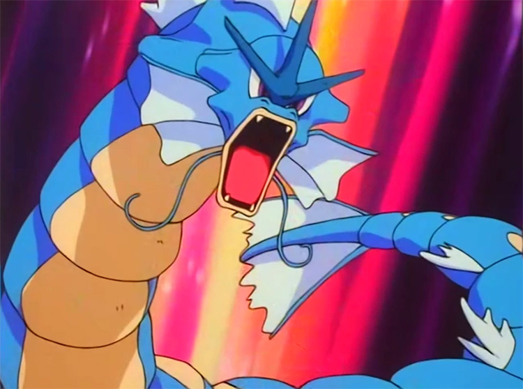 Gyarados Pokemon in the anime