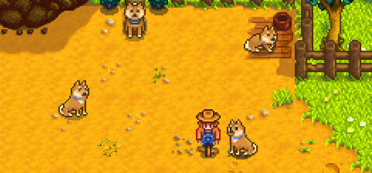 Stardew Valley Pet & Animal Mods To try