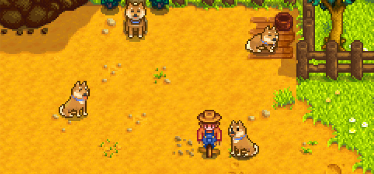 Shiba dogs for Stardew Valley