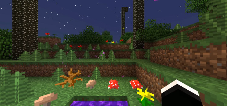 Minecraft detailed screenshot at night