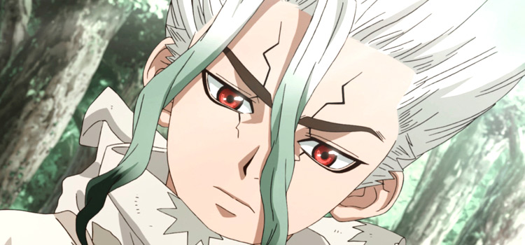 Senku from Dr Stone Anime