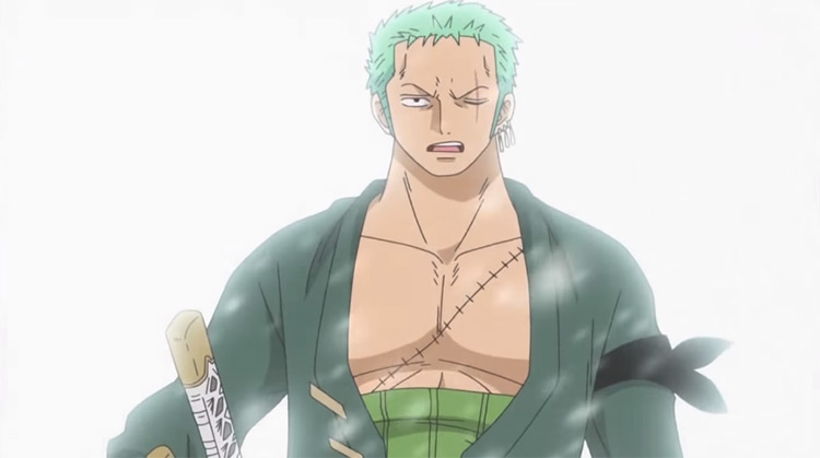 Zoro Roronoa One Piece anime