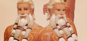 Stormheim viking beard mod for TS4