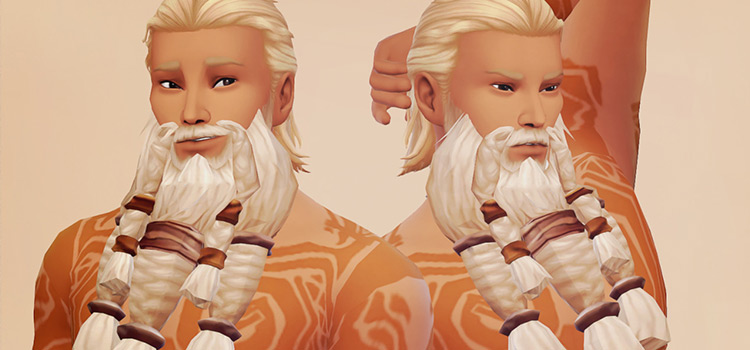 Stormheim viking beard mod for TS4