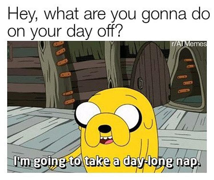 Taking a day long nap meme