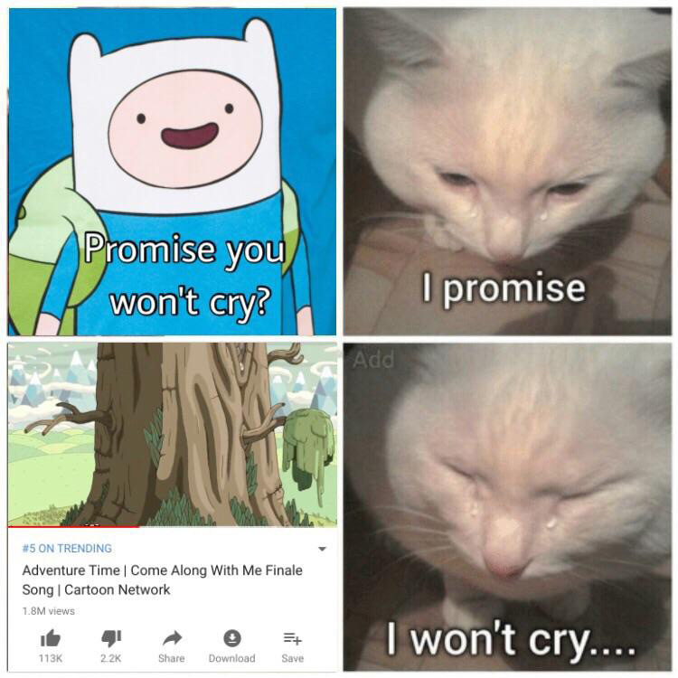 Promise you wont cry meme