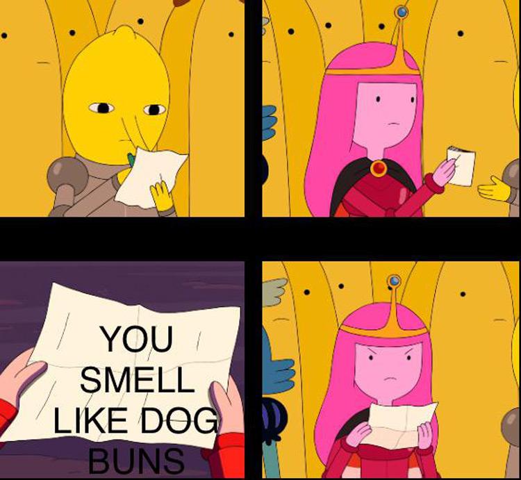 You smell like dog buns meme
