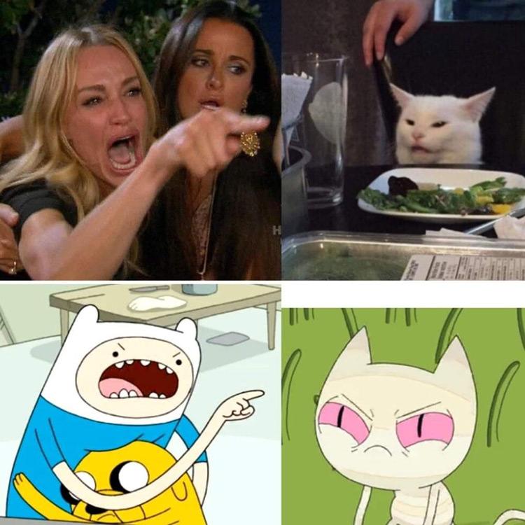 Angry Finn Jake cat meme