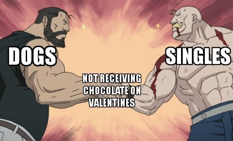Dogs and Singles, not receiving chocolate on valentines day