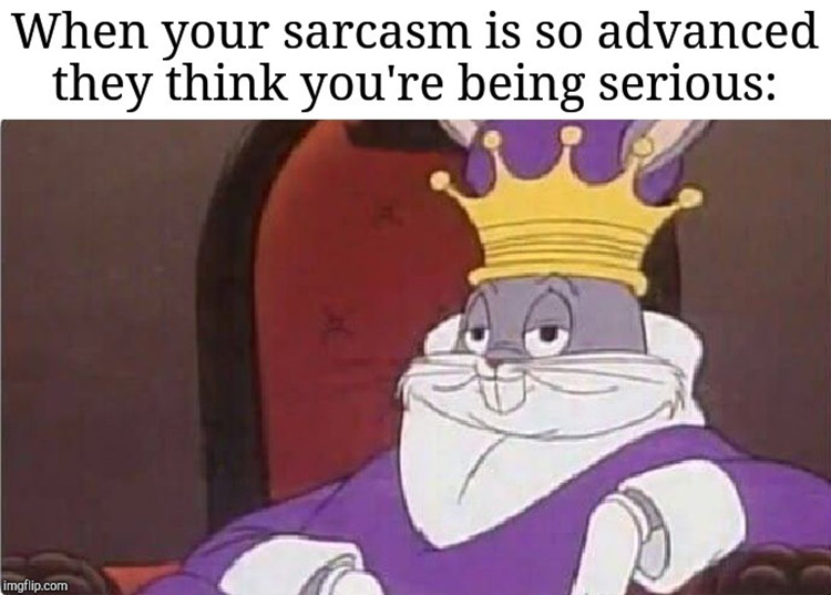 Your sarcasm is so advanced meme