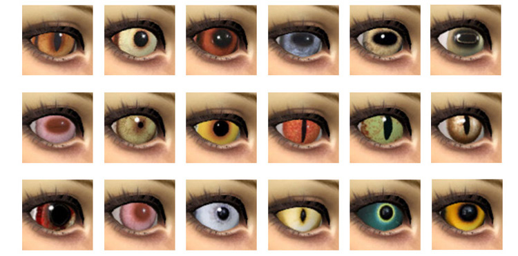 Animal Eyes (21) by Velouriah Sims 4 CC