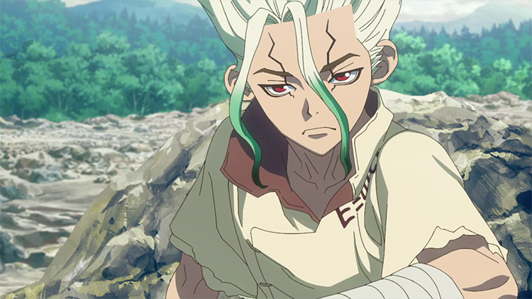 Senku in Dr. Stone anime