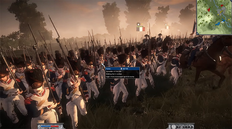 Grenadiers Unit in Napoleon: Total War