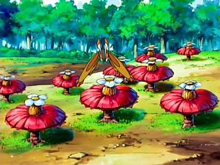 Pomeg Berry Flowers in Pokemon Anime