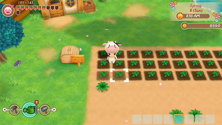 Story of Seasons: Friends of Mineral Town gameplay screenshot