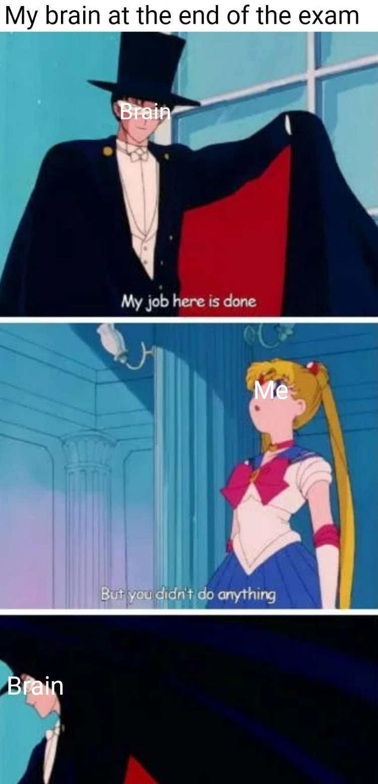 034-sailor-moon-exam-meme.jpg