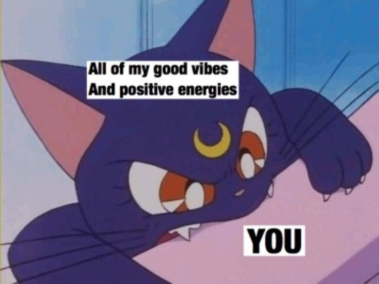 All good vibes and positive energy - Luna cat Meme
