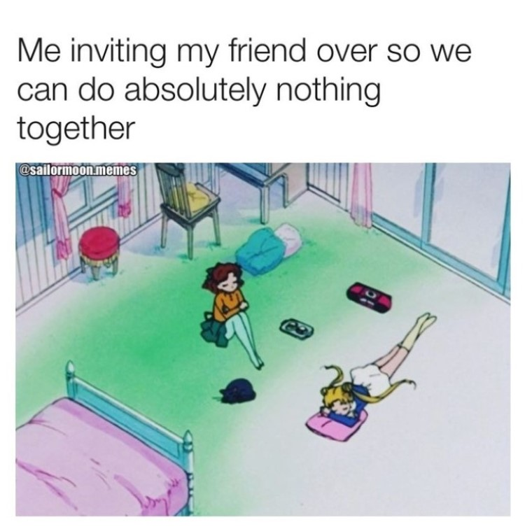 Inviting friends over so we can do absolutely nothing meme