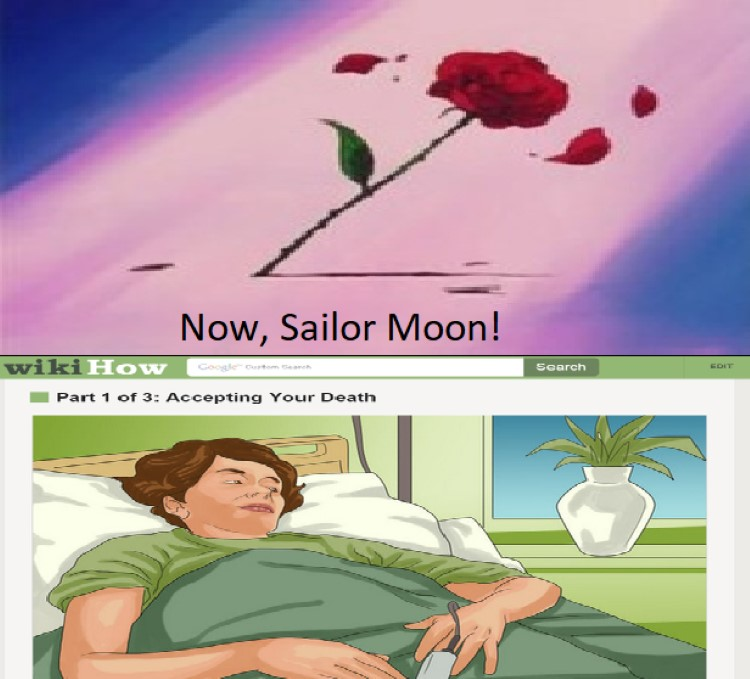 Now, sailor moon!