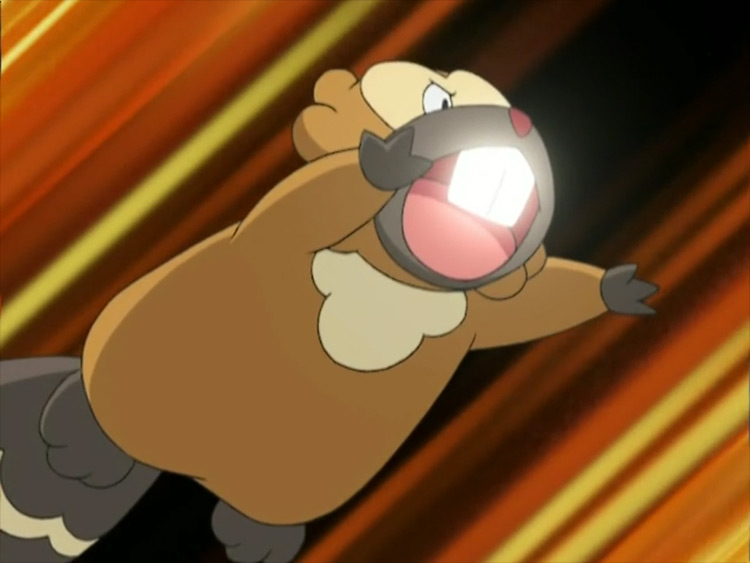 Bibarel Pokémon anime screenshot